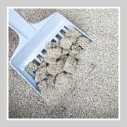 clay cat litter