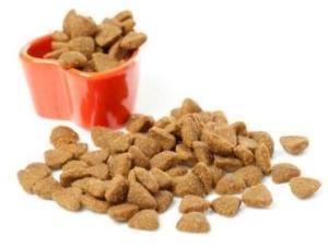 cat food kibbles