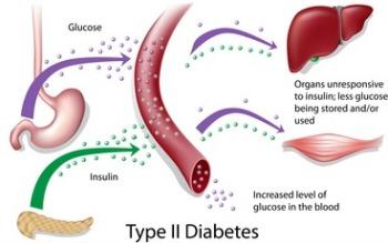 feline-diabetes-type2