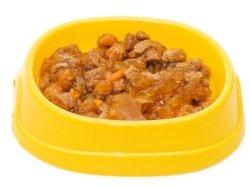 wet or moist cat food